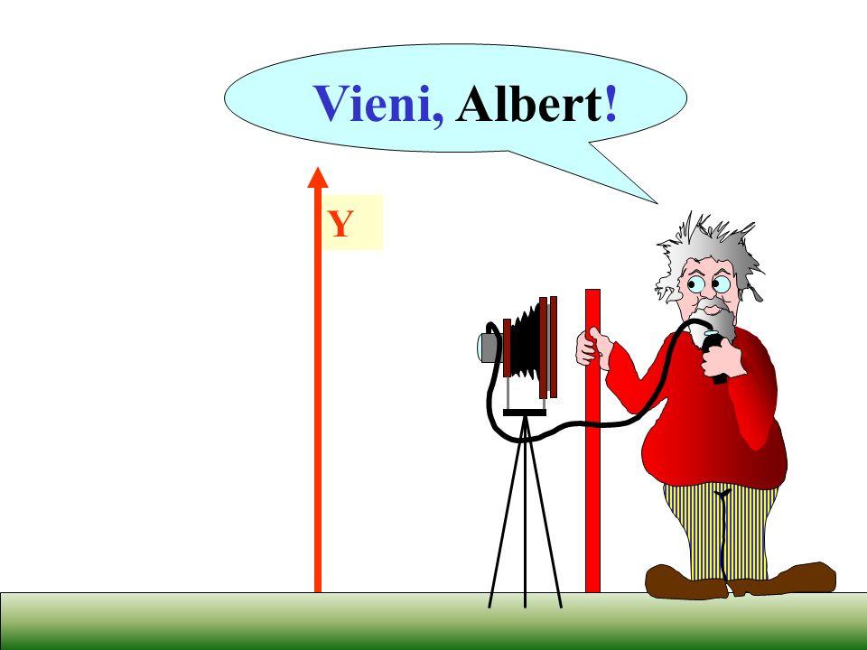 Y Vieni, Albert!