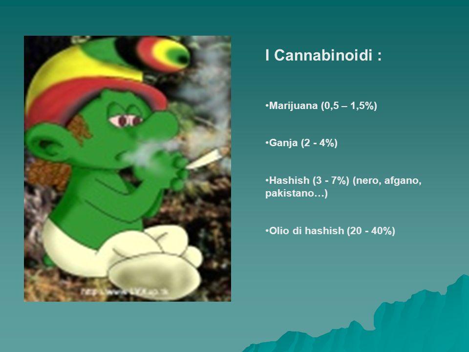 I Cannabinoidi : Marijuana (0,5 – 1,5%) Ganja (2 - 4%) Hashish (3 - 7%) (nero, afgano, pakistano…) Olio di hashish (20 - 40%)