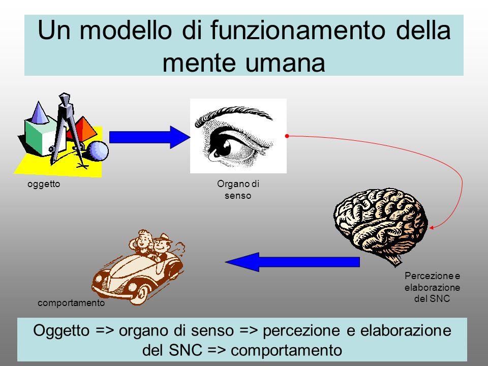 Un modello di funzionamento della mente umana Oggetto => organo di senso => percezione e elaborazione del SNC => comportamento oggettoOrgano di senso