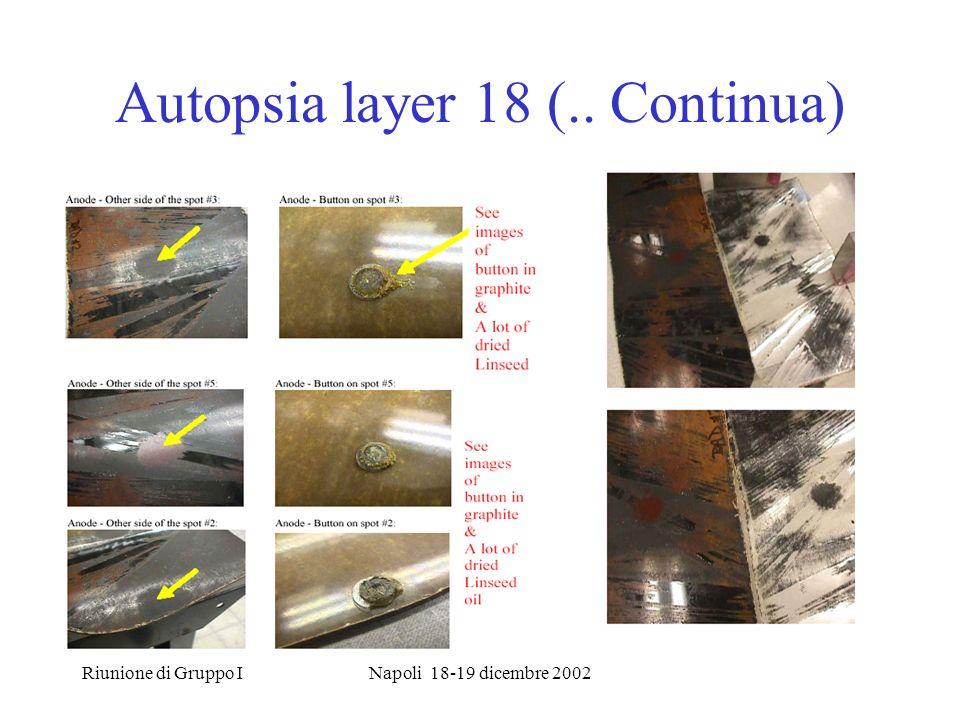 Riunione di Gruppo INapoli 18-19 dicembre 2002 Autopsia layer 18 (.. Continua)