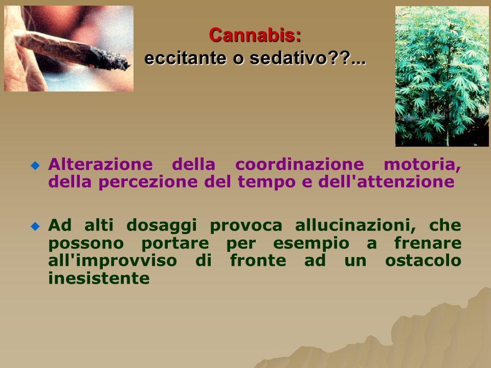 Cannabis: eccitante o sedativo??... Alterazione della coordinazione motoria, della percezione del tempo e dell'attenzione Ad alti dosaggi provoca allu