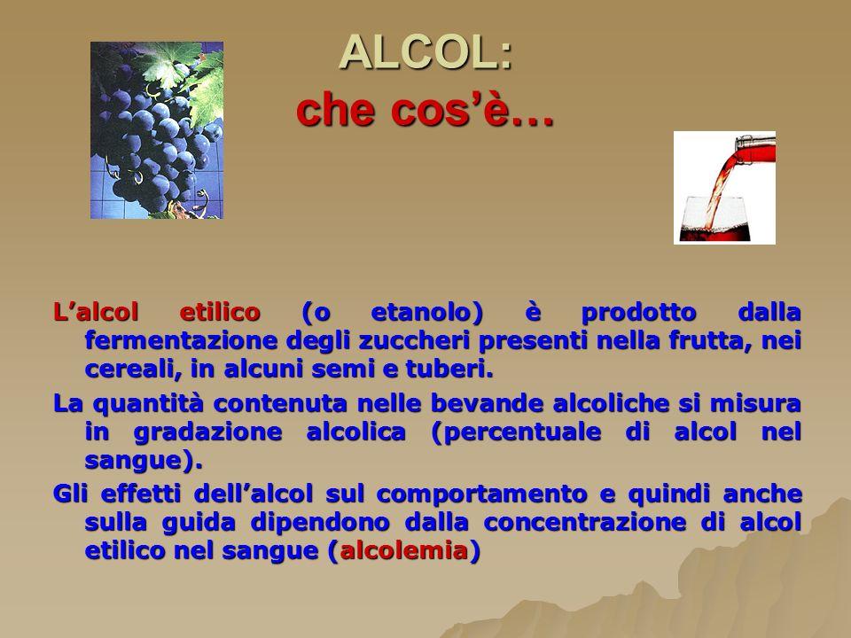ALCOL: che cosè… Lalcol etilico (o etanolo) è prodotto dalla fermentazione degli zuccheri presenti nella frutta, nei cereali, in alcuni semi e tuberi.