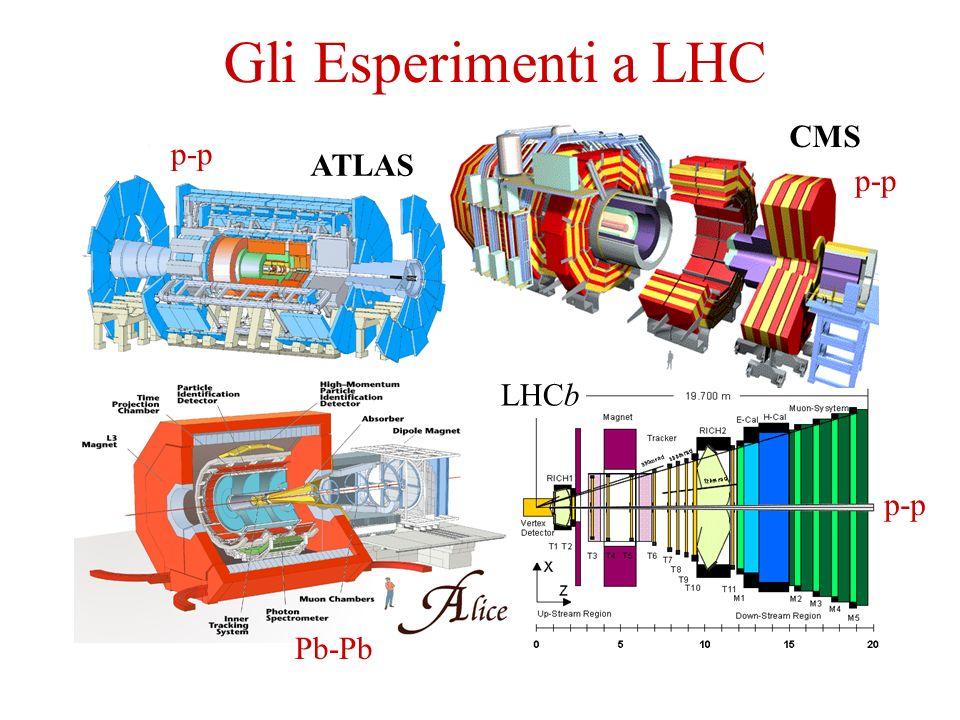 CMS ATLAS LHCb Gli Esperimenti a LHC Pb-Pb p-p