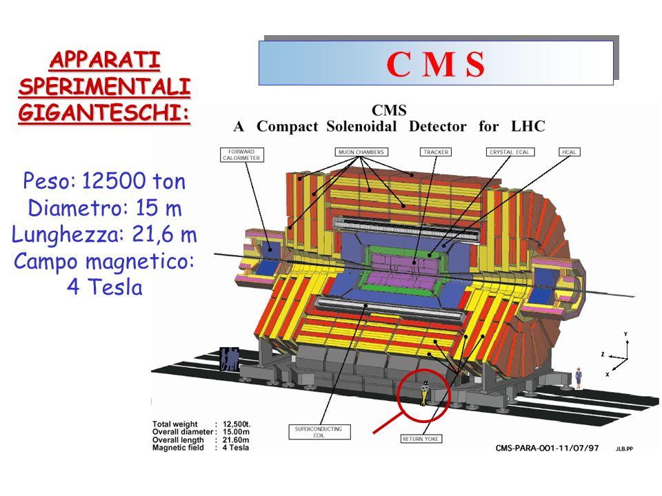 C M S APPARATI SPERIMENTALI GIGANTESCHI: Peso: 12500 ton Diametro: 15 m Lunghezza: 21,6 m Campo magnetico: 4 Tesla