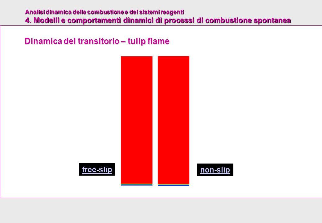 Analisi dinamica della combustione e dei sistemi reagenti 4. Modelli e comportamenti dinamici di processi di combustione spontanea non-slip free-slip