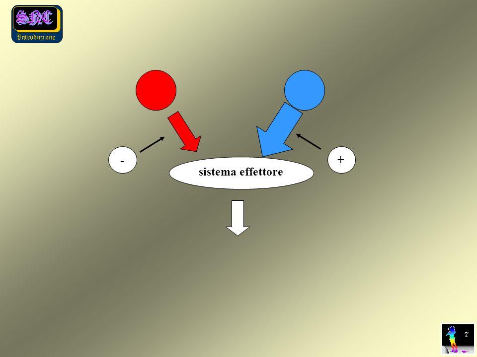 Introduzione sistema effettore 7 + - 7