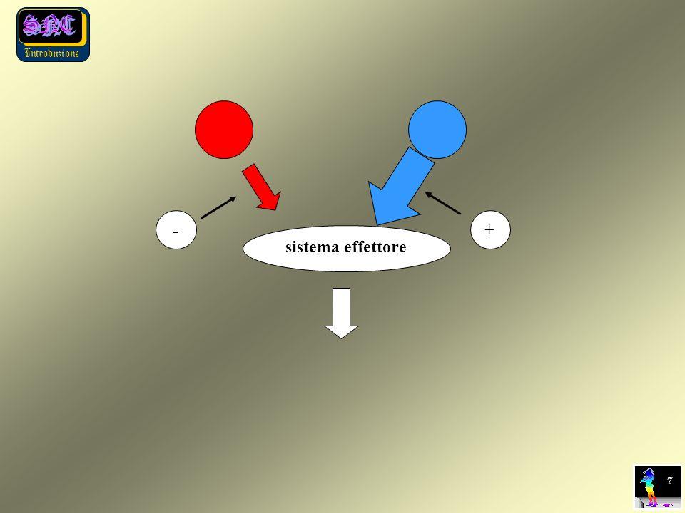 Introduzione sistema effettore + - 7 7