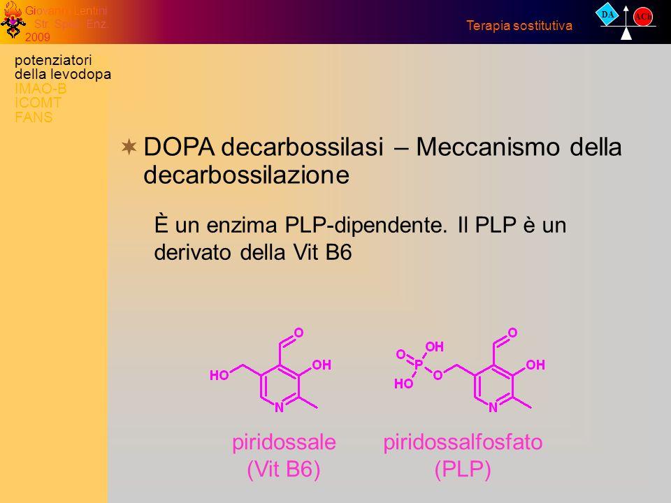 Giovanni Lentini Str. Spec. Enz. 2009 DA ACh Terapia sostitutiva DOPA decarbossilasi – Meccanismo della decarbossilazione È un enzima PLP-dipendente.
