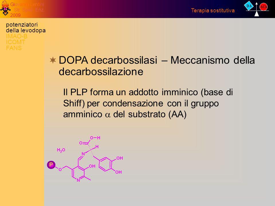 Giovanni Lentini Str. Spec. Enz. 2009 DA ACh Terapia sostitutiva DOPA decarbossilasi – Meccanismo della decarbossilazione Il PLP forma un addotto immi