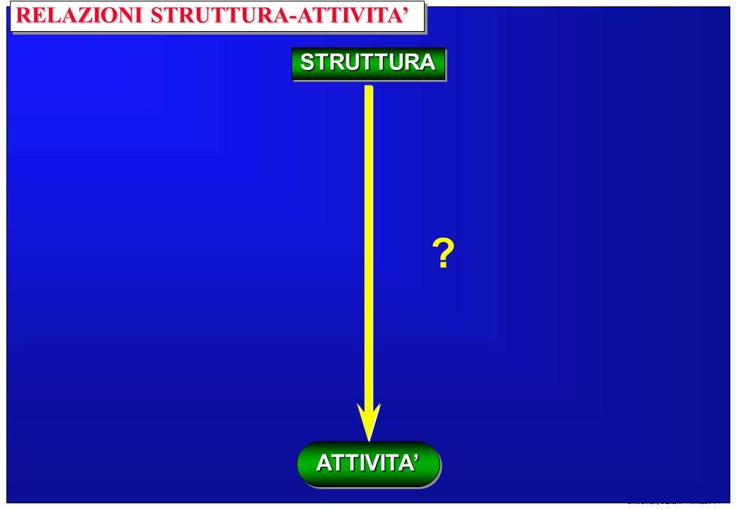 Centro Grafico by S.