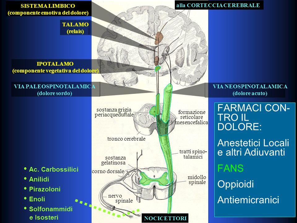alla CORTECCIA CEREBRALE IPOTALAMO (componente vegetativa del dolore) TALAMO (relais) SISTEMA LIMBICO (componente emotiva del dolore) VIA PALEOSPINOTALAMICA (dolore sordo) VIA NEOSPINOTALAMICA (dolore acuto) tronco cerebrale formazione reticolare mesencefalica sostanza grigia periacqueduttale tratti spino- talamici midollo spinale sostanza gelatinosa corno dorsale NOCICETTORI nervo spinale FARMACI CON- TRO IL DOLORE: Anestetici Locali e altri Adiuvanti FANS Oppioidi Antiemicranici FARMACI CON- TRO IL DOLORE: Anestetici Locali e altri Adiuvanti FANS Oppioidi Antiemicranici Ac.