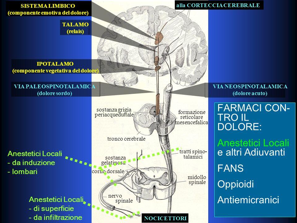 alla CORTECCIA CEREBRALE IPOTALAMO (componente vegetativa del dolore) TALAMO (relais) SISTEMA LIMBICO (componente emotiva del dolore) VIA PALEOSPINOTALAMICA (dolore sordo) VIA NEOSPINOTALAMICA (dolore acuto) tronco cerebrale formazione reticolare mesencefalica sostanza grigia periacqueduttale tratti spino- talamici midollo spinale sostanza gelatinosa corno dorsale NOCICETTORI nervo spinale FARMACI CON- TRO IL DOLORE: Anestetici Locali e altri Adiuvanti FANS Oppioidi Antiemicranici FARMACI CON- TRO IL DOLORE: Anestetici Locali e altri Adiuvanti FANS Oppioidi Antiemicranici Antidepressivi Triciclici Agonisti Adrenergici