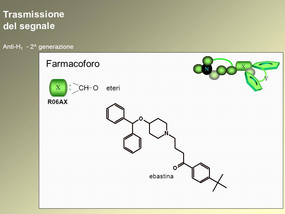 Trasmissione del segnale Anti-H 1 - 2^ generazione N X Y Farmacoforo X : R06AX CH O eteri ebastina