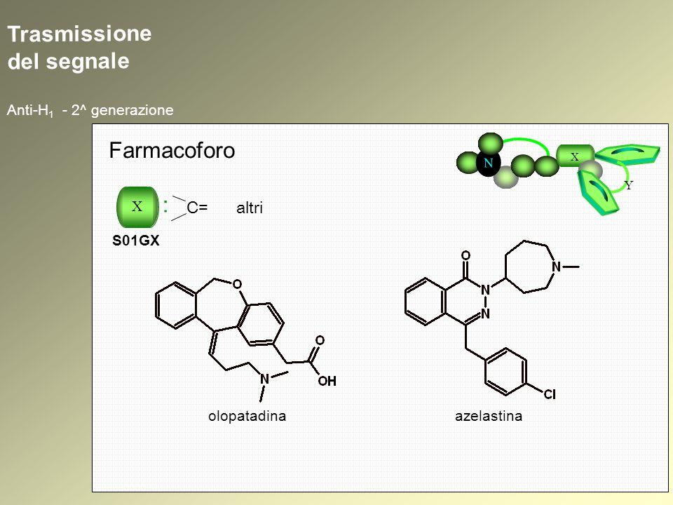 Trasmissione del segnale Anti-H 1 - 2^ generazione N X Y Farmacoforo X : S01GX C= altri olopatadinaazelastina