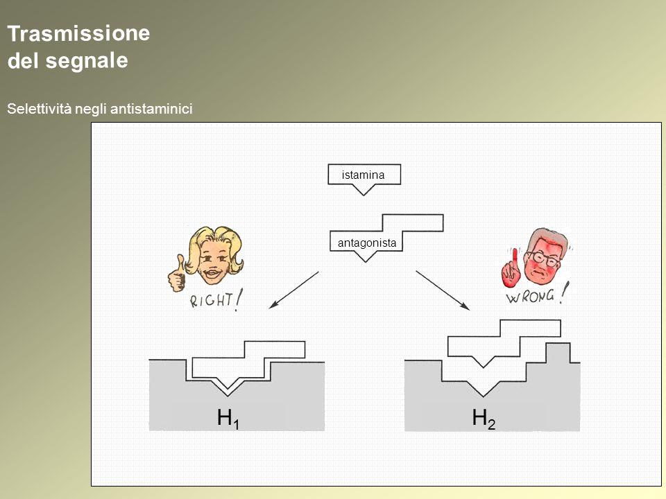 Trasmissione del segnale Selettività negli antistaminici istamina antagonista H1H1 H2H2