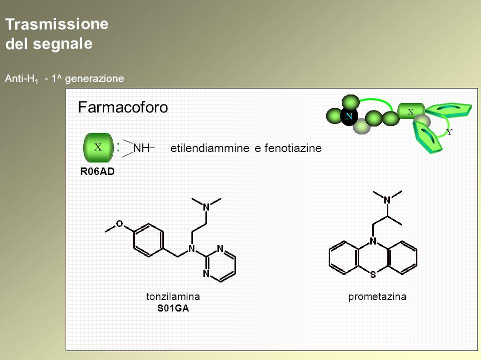 Trasmissione del segnale Anti-H 1 - 1^ generazione N X Y Farmacoforo X : R06AD NH etilendiammine e fenotiazine prometazinatonzilamina S01GA