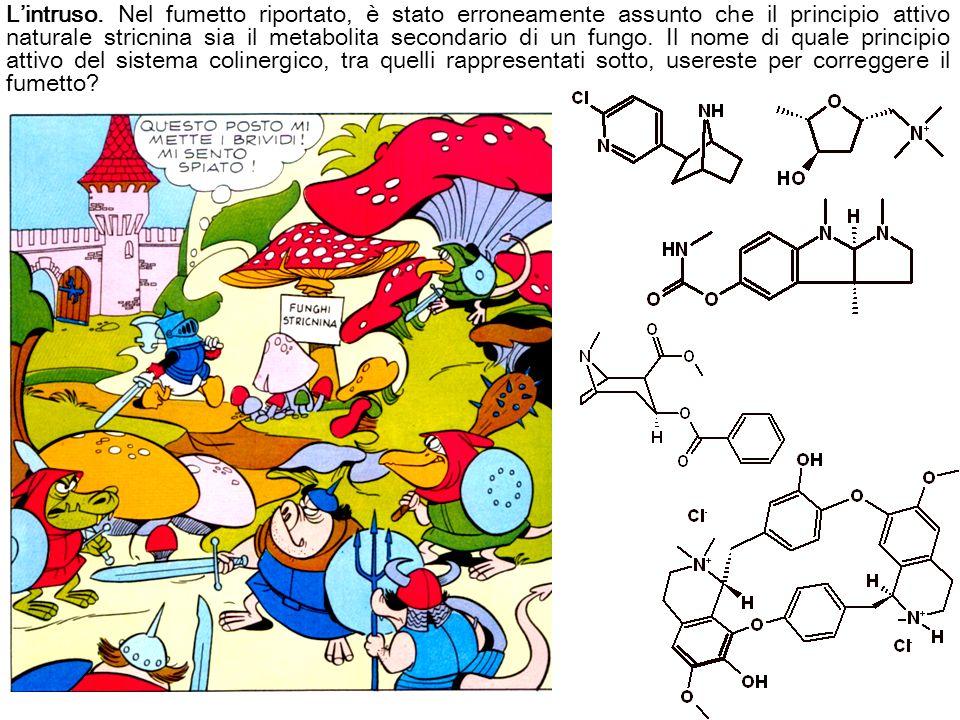 Lintruso. Nel fumetto riportato, è stato erroneamente assunto che il principio attivo naturale stricnina sia il metabolita secondario di un fungo. Il