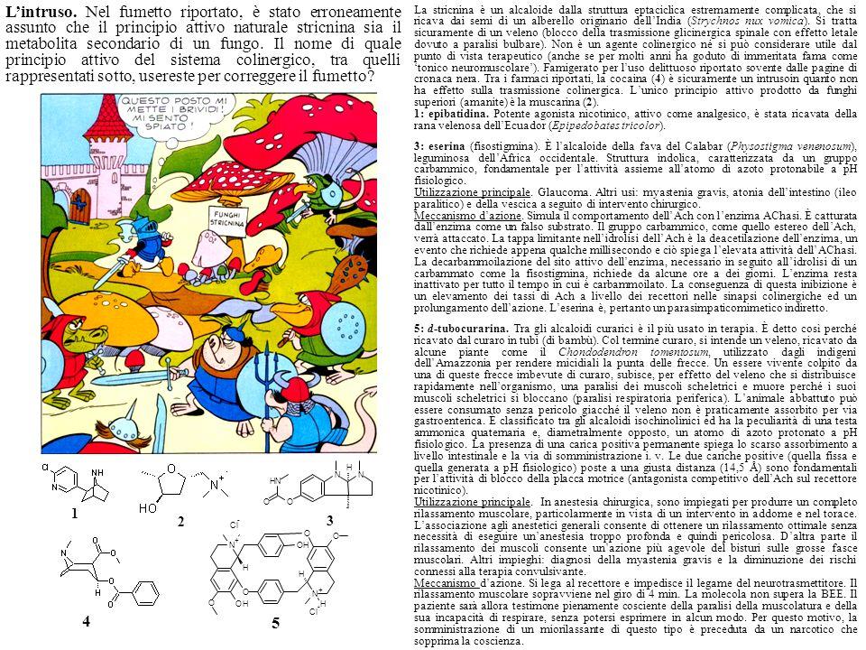 1 5 NN OO NH H N + N + O O OH O O OH H H H Cl - - 2 3 4 La stricnina è un alcaloide dalla struttura eptaciclica estremamente complicata, che si ricava