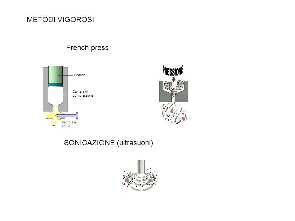 Camera di compressione Valvola a spillo Pistone SONICAZIONE (ultrasuoni) French press METODI VIGOROSI