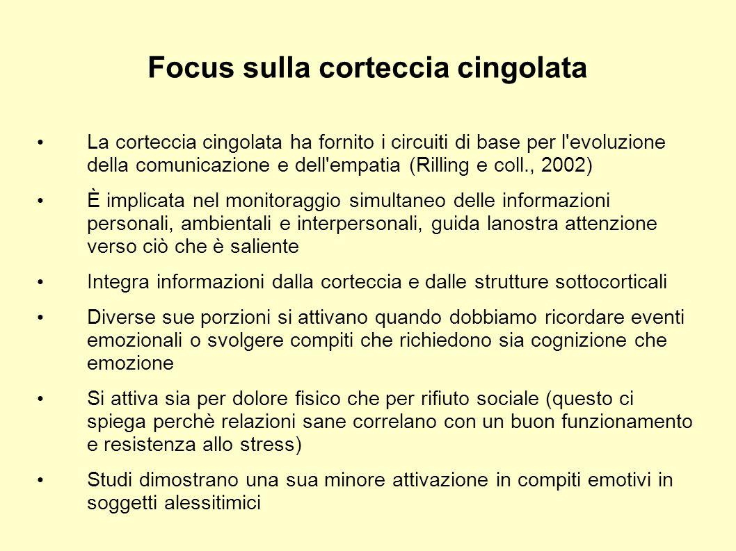 Focus sulla corteccia cingolata La corteccia cingolata ha fornito i circuiti di base per l'evoluzione della comunicazione e dell'empatia (Rilling e co