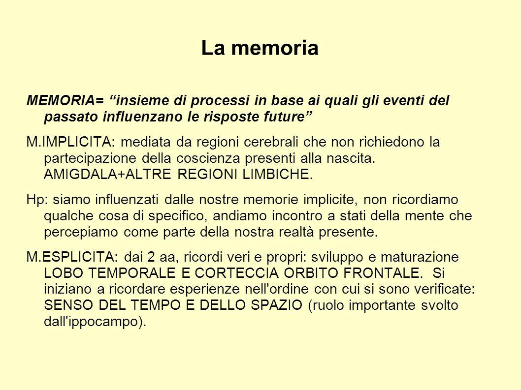 La memoria MEMORIA= insieme di processi in base ai quali gli eventi del passato influenzano le risposte future M.IMPLICITA: mediata da regioni cerebra