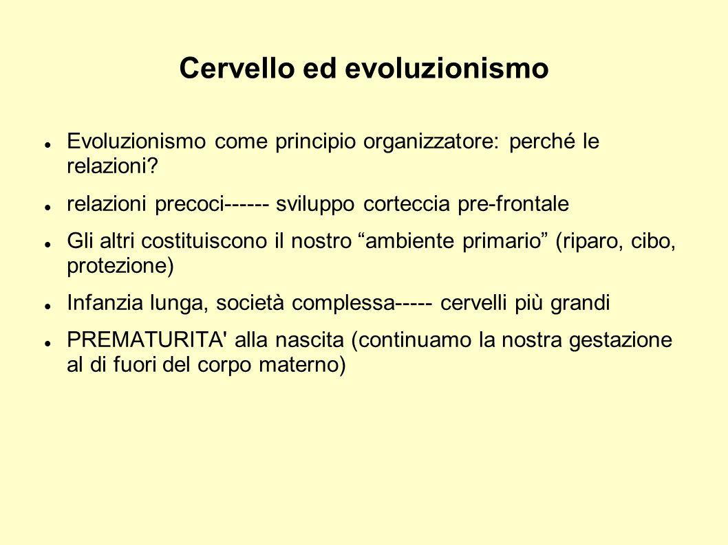 Cervello ed evoluzionismo Evoluzionismo come principio organizzatore: perché le relazioni? relazioni precoci------ sviluppo corteccia pre-frontale Gli