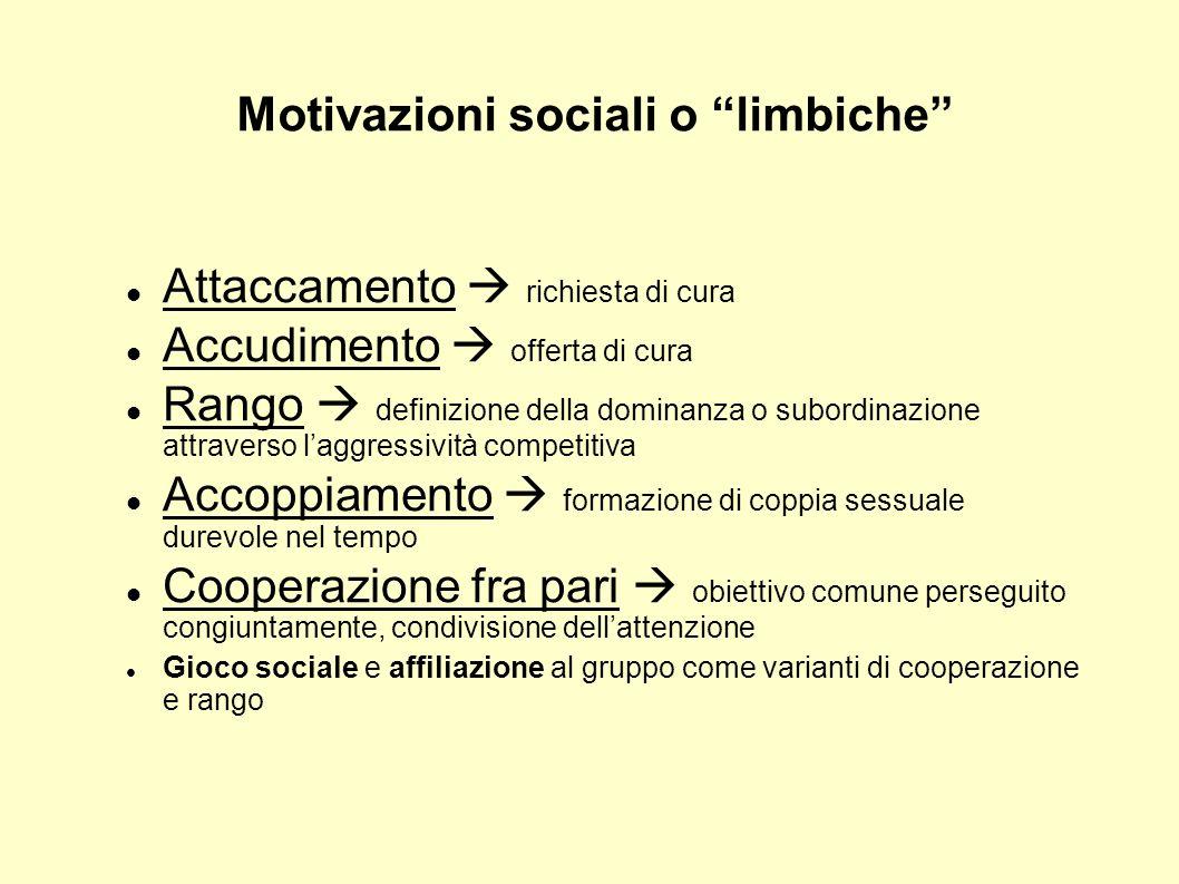 Motivazioni sociali o limbiche Attaccamento richiesta di cura Accudimento offerta di cura Rango definizione della dominanza o subordinazione attravers