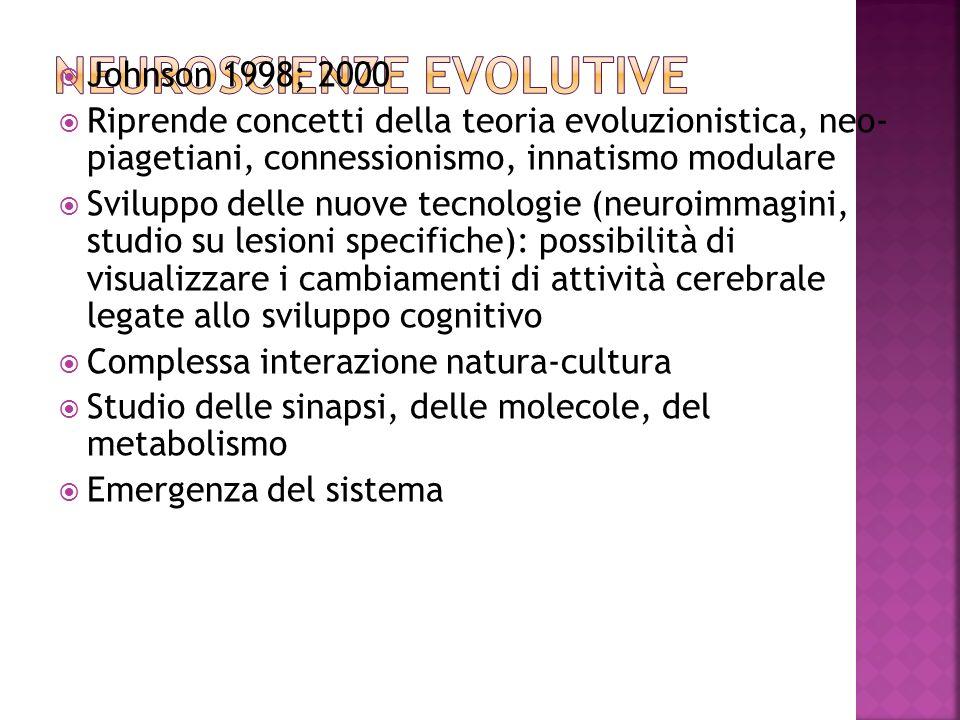 Johnson 1998; 2000 Riprende concetti della teoria evoluzionistica, neo- piagetiani, connessionismo, innatismo modulare Sviluppo delle nuove tecnologie