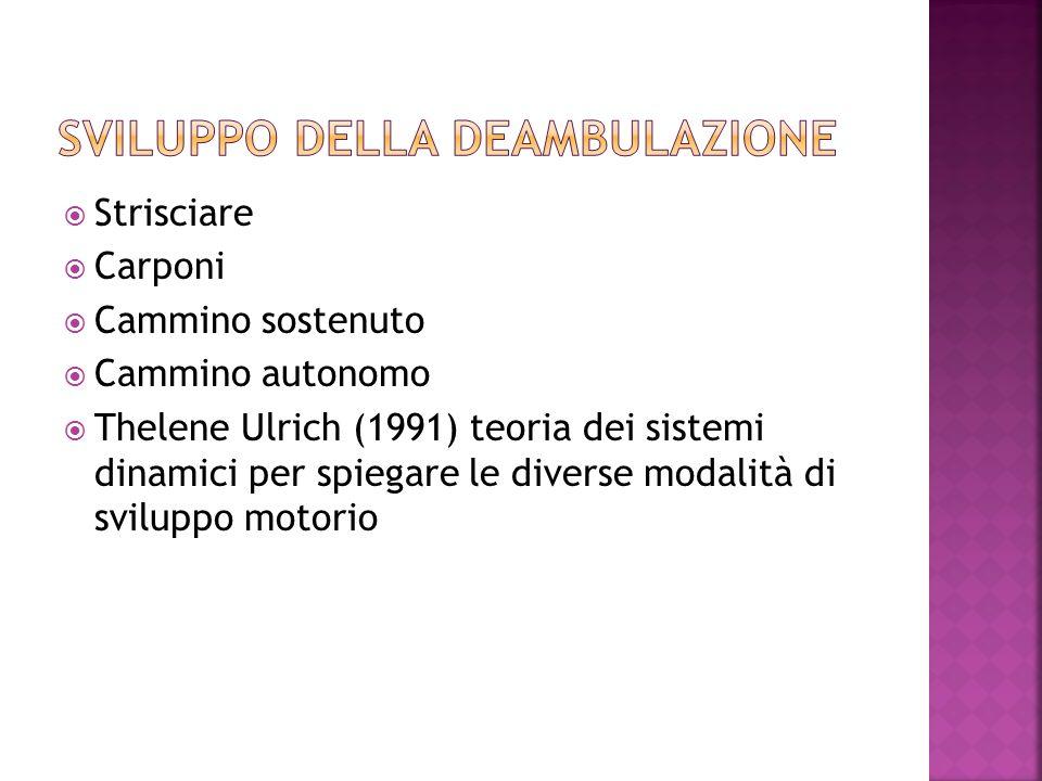 Strisciare Carponi Cammino sostenuto Cammino autonomo Thelene Ulrich (1991) teoria dei sistemi dinamici per spiegare le diverse modalità di sviluppo motorio