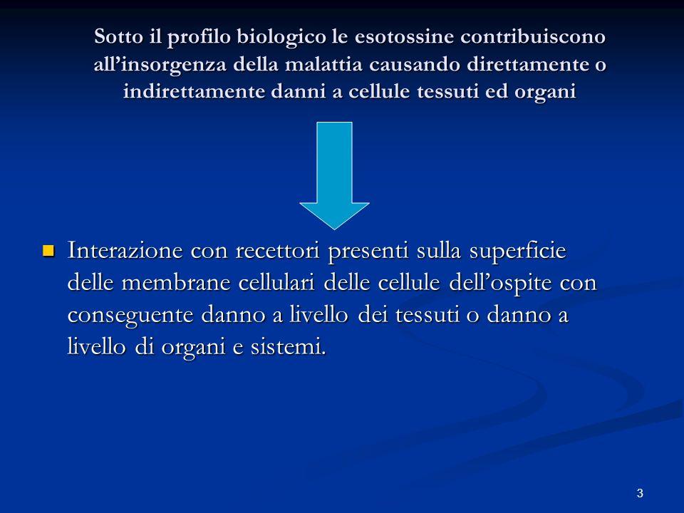 4 Lattività delle esotossine può intervenire a livelli differenti Clostrdium perfringens Clostrdium perfringens Enterotossica Citossica Bacillus cereus Bacillus cereus Emolitica Emolitica Citossica Citossica Dermonecrotizzazione Dermonecrotizzazione