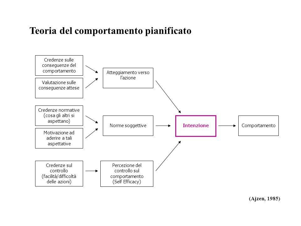 Comportamento Percezione del controllo sul comportamento (Self Efficacy) Intenzione Norme soggettive Atteggiamento verso lazione Credenze sulle conseg