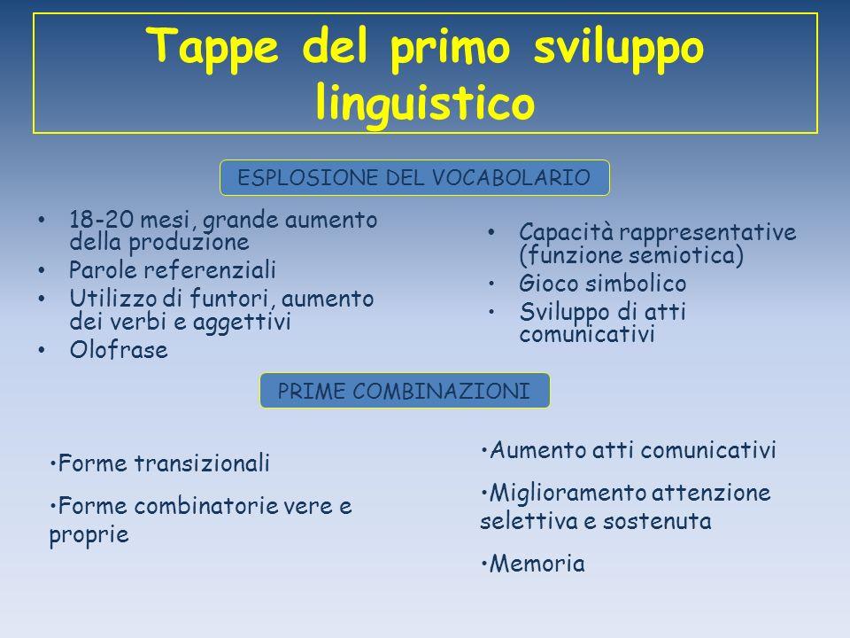 Tappe del primo sviluppo linguistico 18-20 mesi, grande aumento della produzione Parole referenziali Utilizzo di funtori, aumento dei verbi e aggettiv