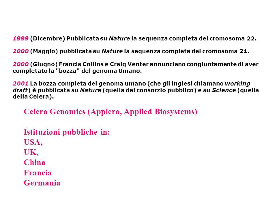 1999 (Dicembre) Pubblicata su Nature la sequenza completa del cromosoma 22.