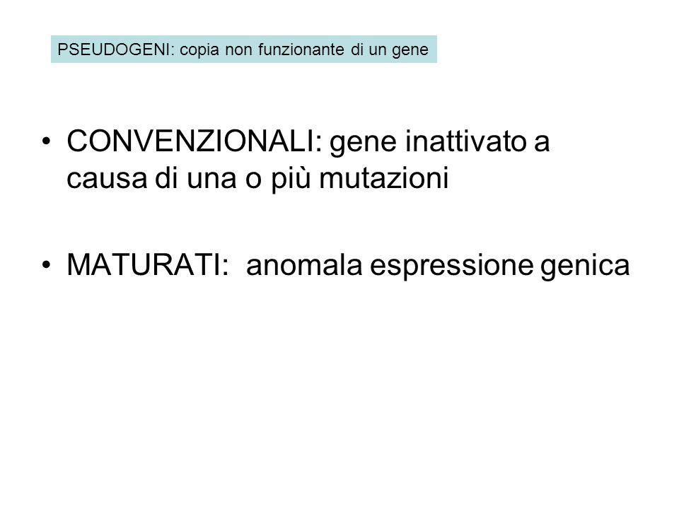 CONVENZIONALI: gene inattivato a causa di una o più mutazioni MATURATI: anomala espressione genica PSEUDOGENI: copia non funzionante di un gene