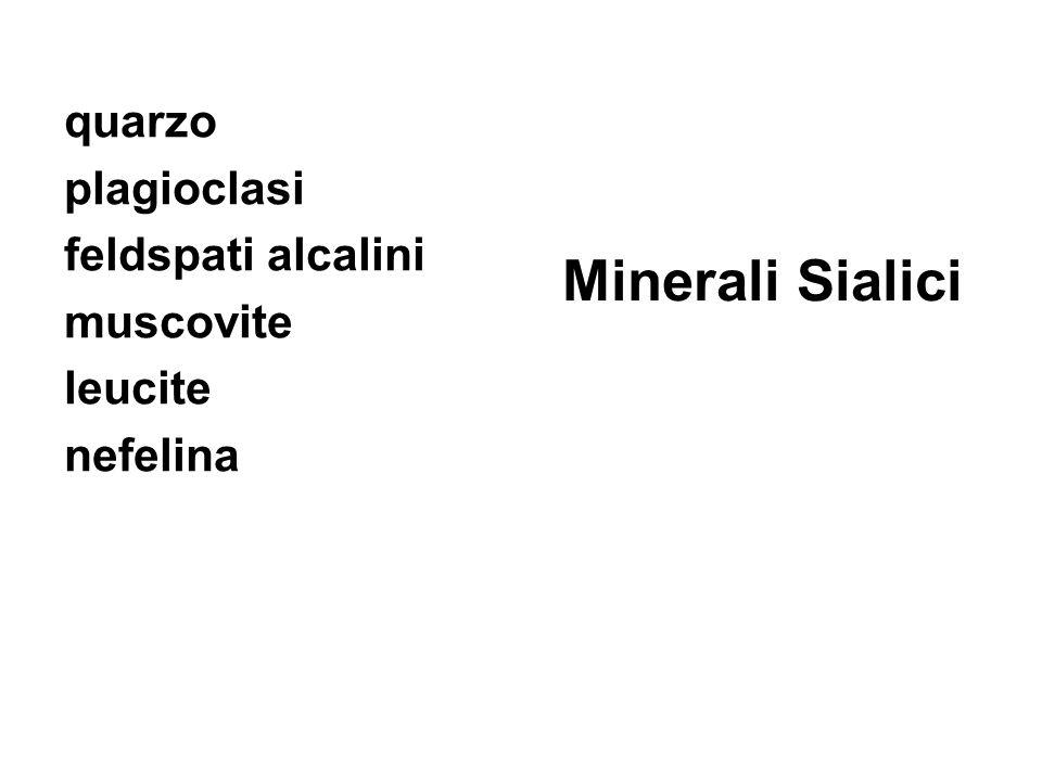 quarzo plagioclasi feldspati alcalini muscovite leucite nefelina Minerali Sialici