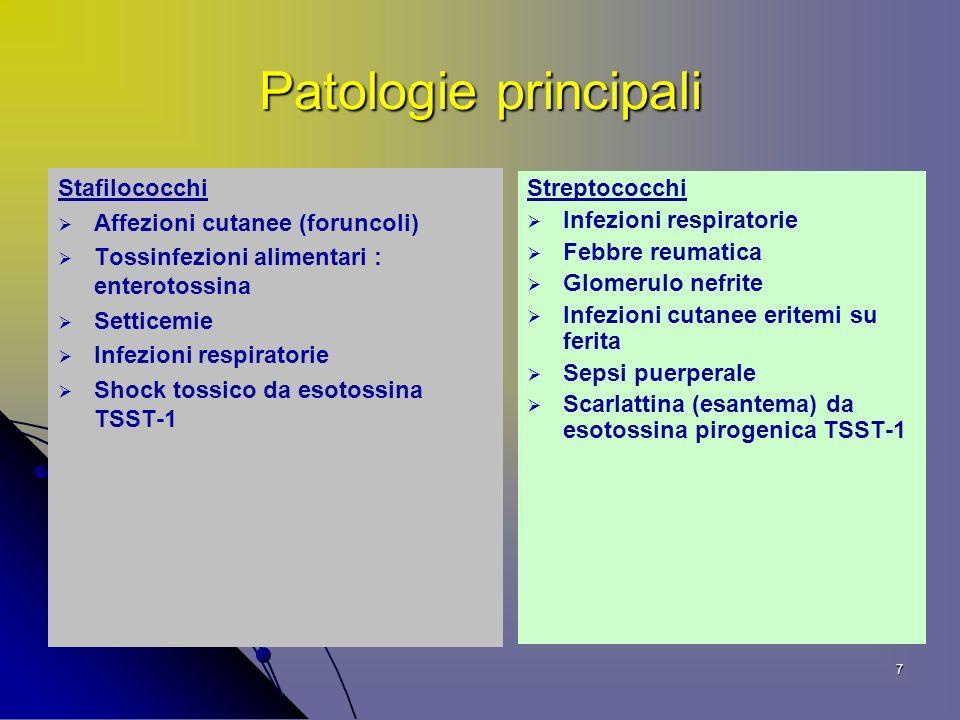 8 Gruppi antigenici Streptococchi Gruppo A : streptococco emolitico (piogenico) prevalentemente patogeno Gruppo D: s.