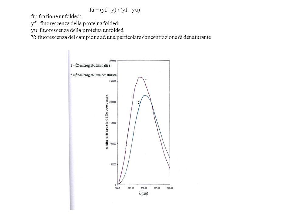 fu = (yf - y) / (yf - yu) fu: frazione unfolded; yf : fluorescenza della proteina folded; yu: fluorescenza della proteina unfolded Y: fluorescenza del