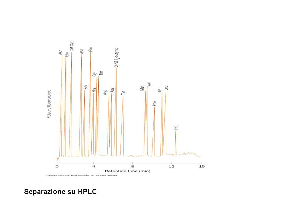 Separazione su HPLC