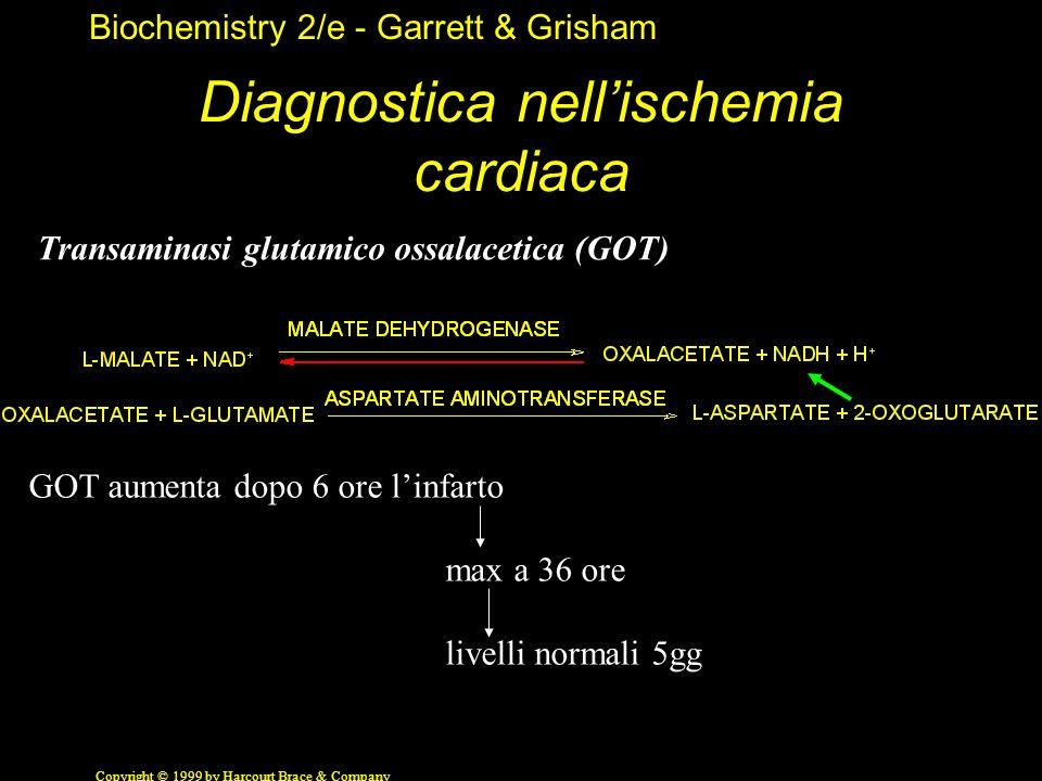 Biochemistry 2/e - Garrett & Grisham Copyright © 1999 by Harcourt Brace & Company Diagnostica nellischemia cardiaca Transaminasi glutamico ossalacetic
