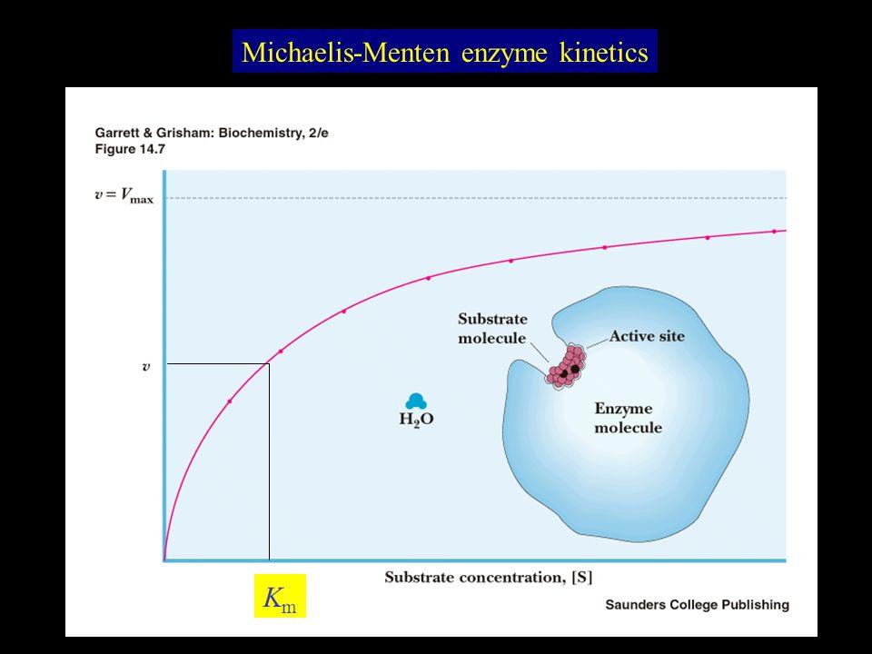 Michaelis-Menten enzyme kinetics KmKm
