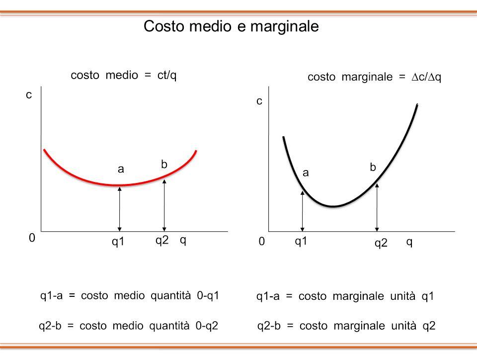 Costo medio e marginale