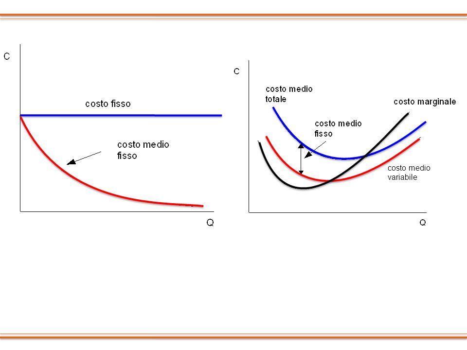 costo medio variabile