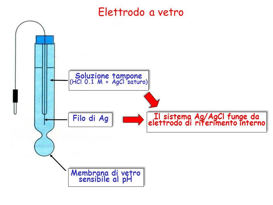 Elettrodo a vetro Filo di Ag Soluzione tampone (HCl 0.1 M + AgCl saturo) Membrana di vetro sensibile al pH Il sistema Ag/AgCl funge da elettrodo di ri