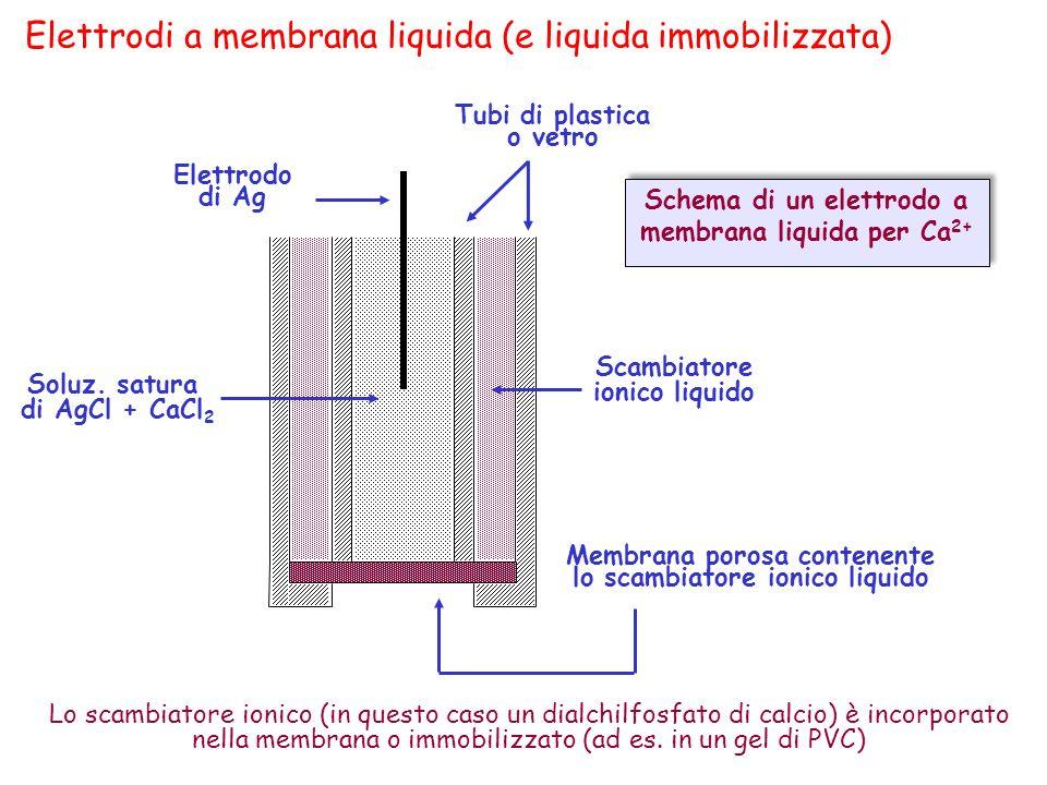 Elettrodi a membrana liquida (e liquida immobilizzata) Elettrodo di Ag Tubi di plastica o vetro Lo scambiatore ionico (in questo caso un dialchilfosfa