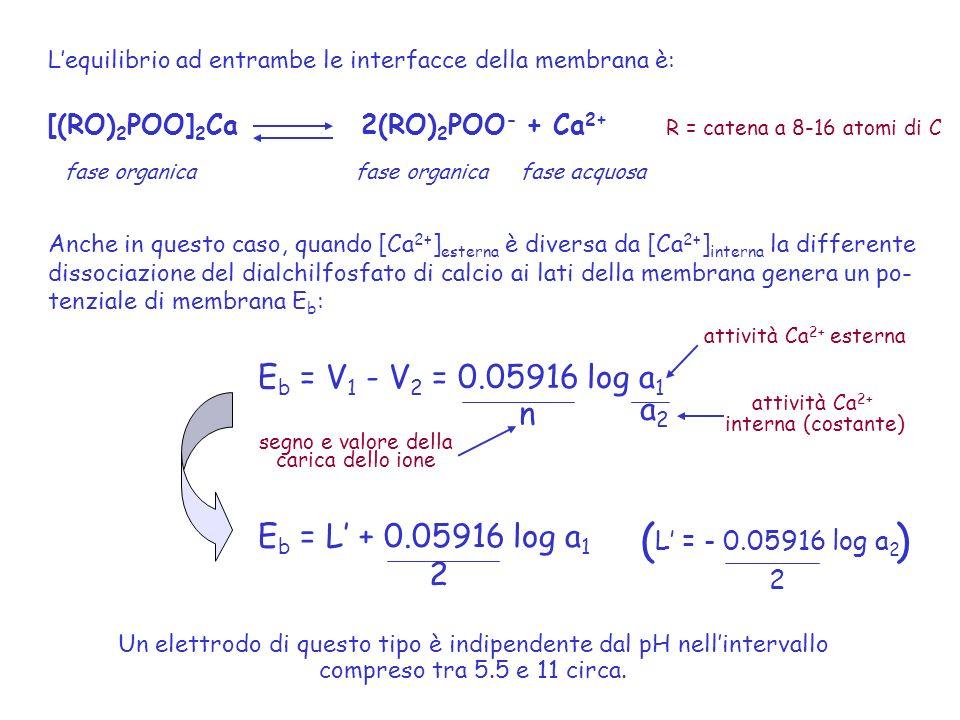 Lequilibrio ad entrambe le interfacce della membrana è: [(RO) 2 POO] 2 Ca 2(RO) 2 POO - + Ca 2+ fase organica fase organica fase acquosa Anche in ques
