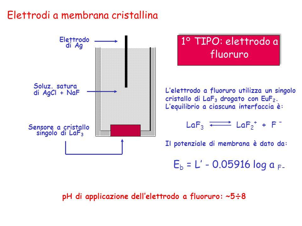 Elettrodi a membrana cristallina Elettrodo di Ag Lelettrodo a fluoruro utilizza un singolo cristallo di LaF 3 drogato con EuF 2. Lequilibrio a ciascun