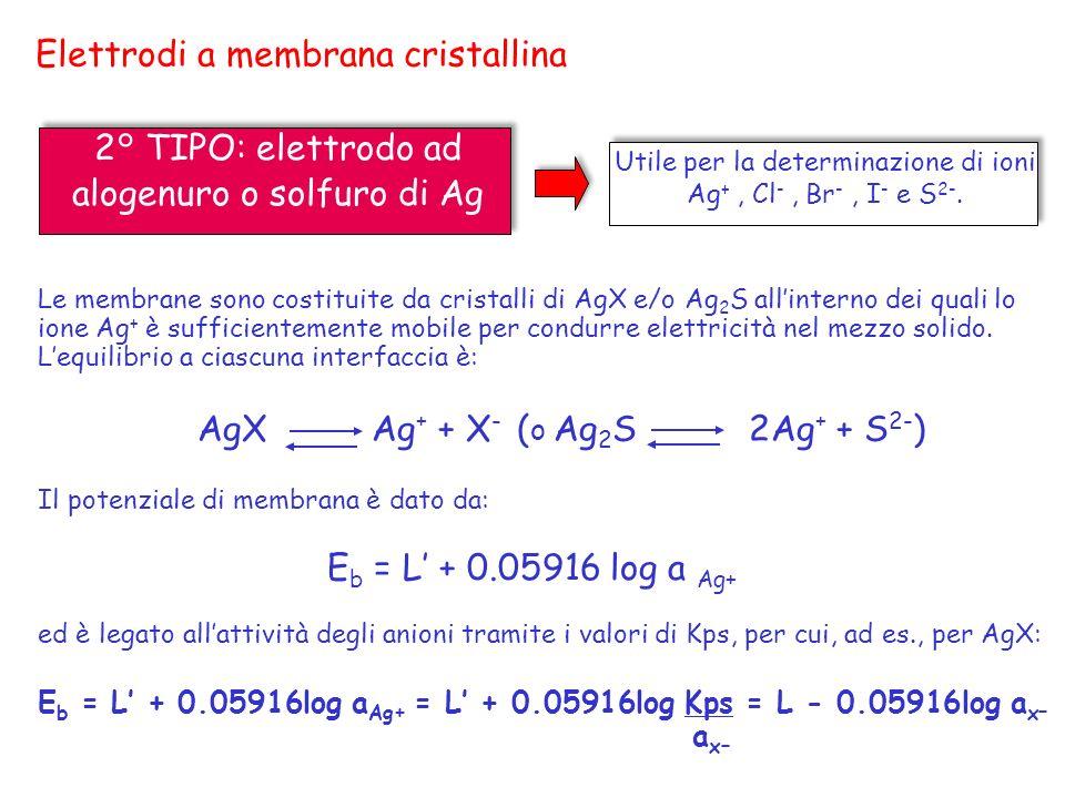 Elettrodi a membrana cristallina 2° TIPO: elettrodo ad alogenuro o solfuro di Ag Le membrane sono costituite da cristalli di AgX e/o Ag 2 S allinterno