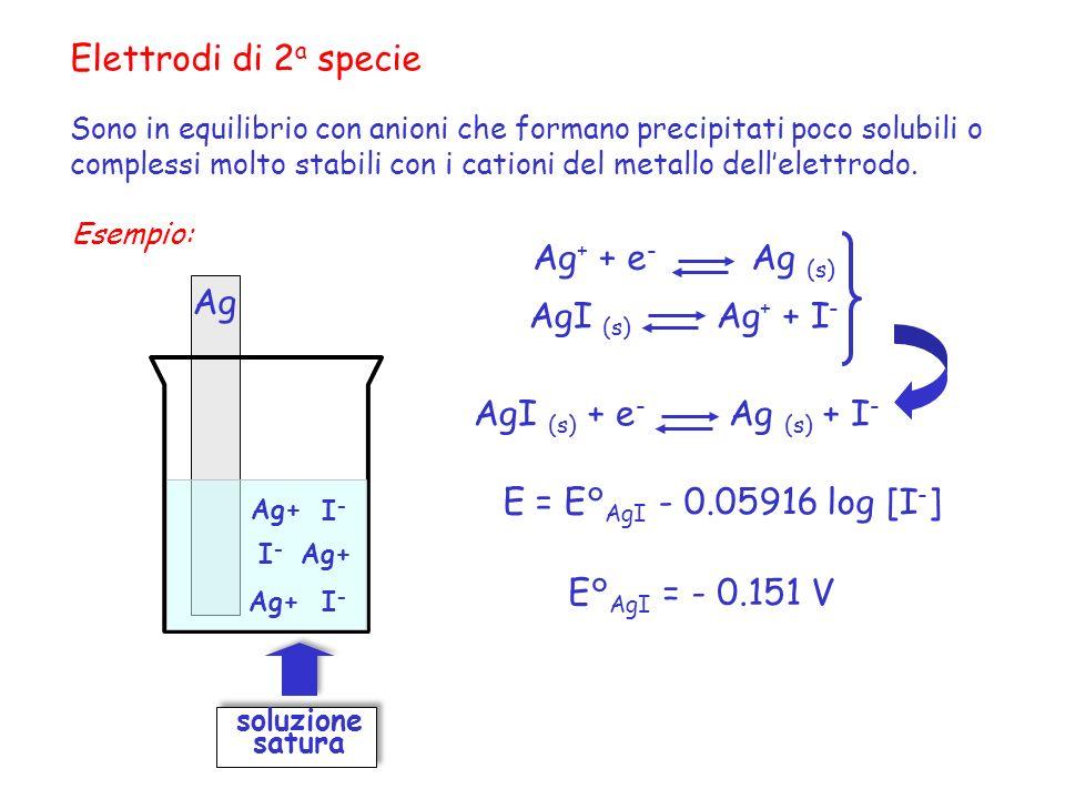 Elettrodi di 2 a specie Sono in equilibrio con anioni che formano precipitati poco solubili o complessi molto stabili con i cationi del metallo dellel