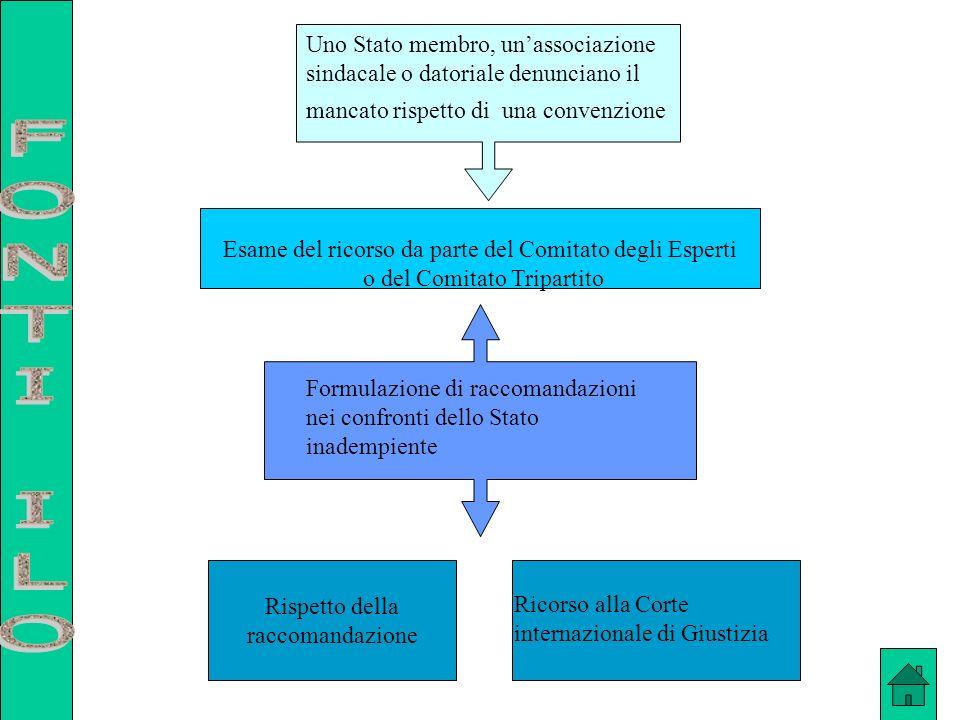Esame del ricorso da parte del Comitato degli Esperti o del Comitato Tripartito Uno Stato membro, unassociazione sindacale o datoriale denunciano il m