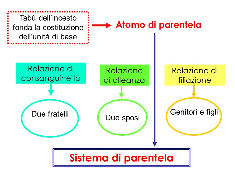 Tabù dellincesto fonda la costituzione dellunità di base Atomo di parentela Relazione di consanguineità Relazione di alleanza Relazione di filiazione